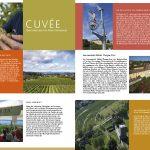 Weinmagazin_Seite_2